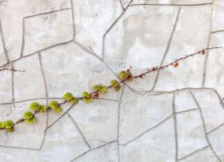 Zalety ogrodzeń betonowych